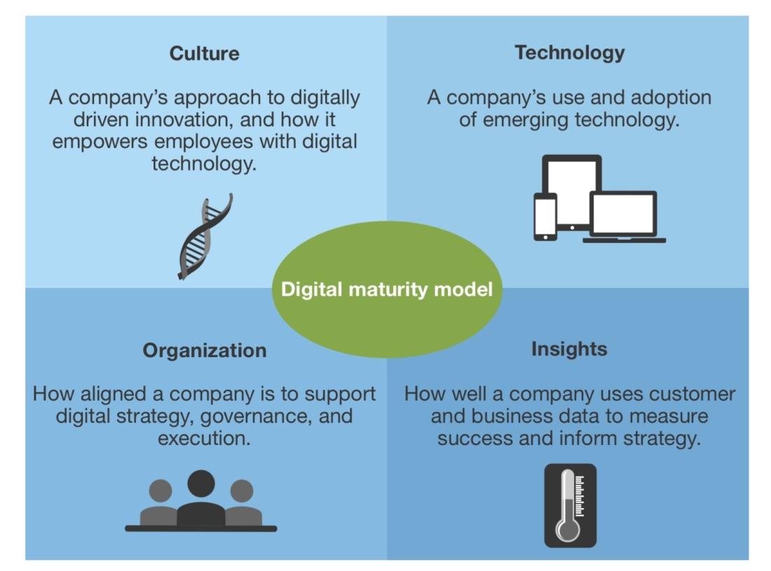Digital Maturity Dimensions